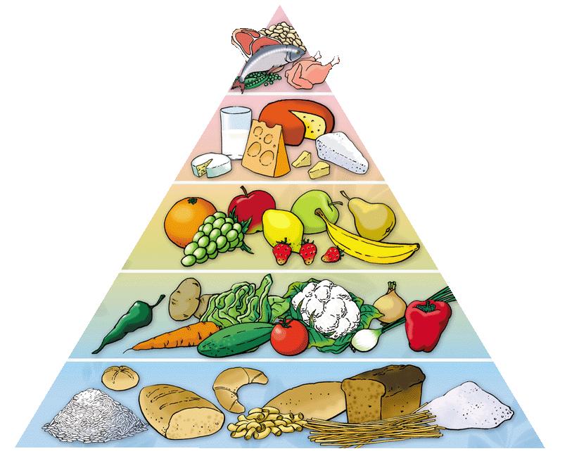 здоровое питание школьника 3 класс