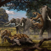 mauricio-anton-smilodon-and-columbian-mammoth