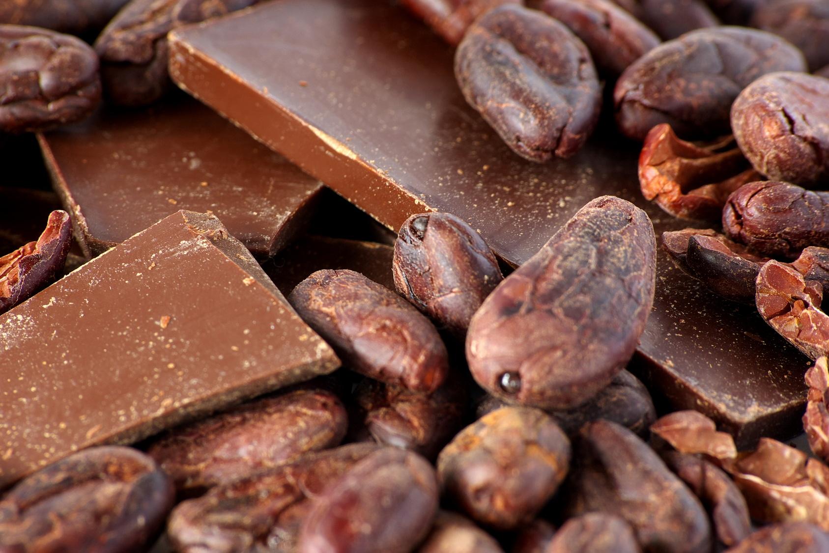 cacao-beans-and-choco-original