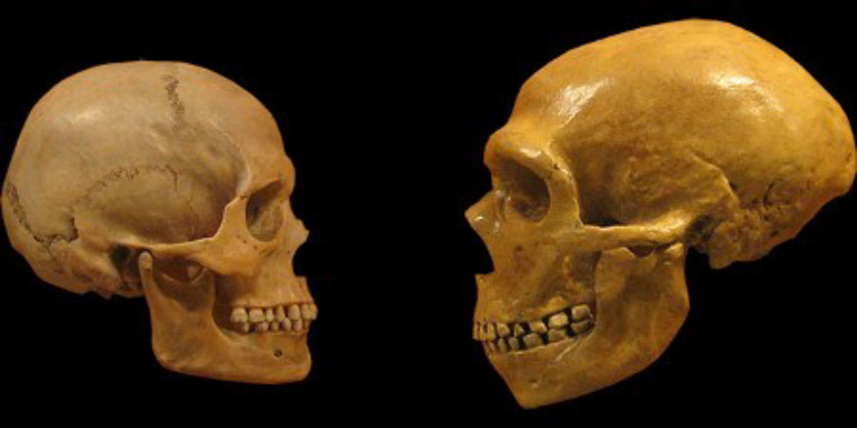 effects-of-neanderthal-dna-on-modern-humans-l1